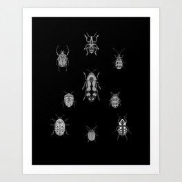 Beautiful Bugs Black Art Print