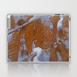snow and leaves Laptop & iPad Skin