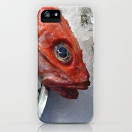 Red Fish Shrimp Market iPhone Case