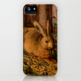 A Hare in the Forest, by Hans Hoffmann, c. 1585 iPhone Case