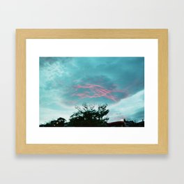 Pink rose. Framed Art Print
