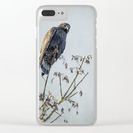 Red-Tailed Hawk, Rufous Morph Clear iPhone Case
