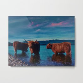 Different cows Metal Print