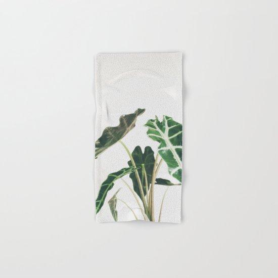 Elephant Ear Hand & Bath Towel
