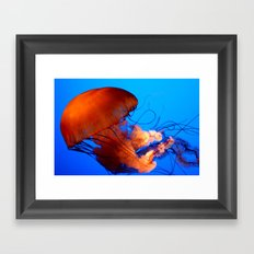 Underwater Dancer Framed Art Print