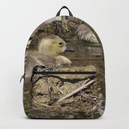 Goslings Backpack