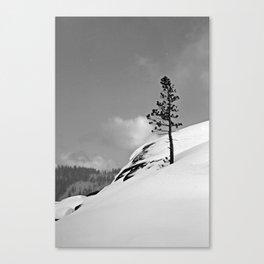Truckee Canvas Print