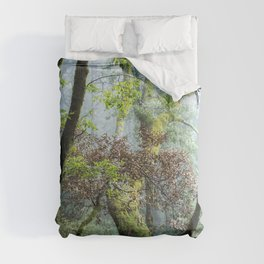 Fog, Contrasts, and Moss Covered Trunks Along the Humbug Mountain Trail Comforters