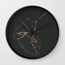 Dsungaripterus Weii Skeleton Study Wall Clock