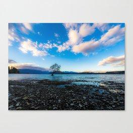 New Zealand Wanaka Tree Canvas Print