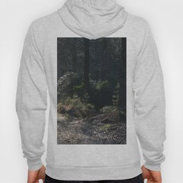 Mystical path Hoody