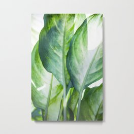 tropic abstract Metal Print