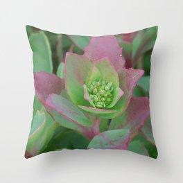 litte bit of green Throw Pillow