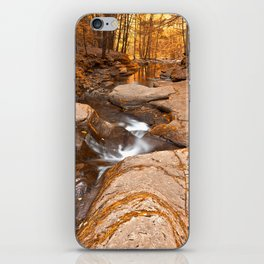 Worlds End Forest Stream - Gold Rapture iPhone Skin