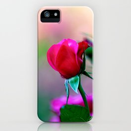 Red Rose Flowers iPhone Case