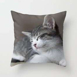 Jack - Kitten Portrait #3 (2016) Throw Pillow