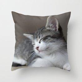 Jack - Kitten Portrait #3 (2016) Throw Pillow