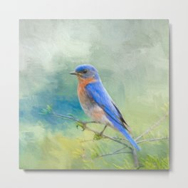 Bluebird In The Garden Metal Print