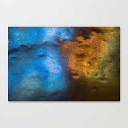 Light in Contrast Canvas Print