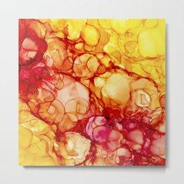 Nature of the sun Metal Print