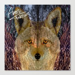 Long Night Coyote Canvas Print