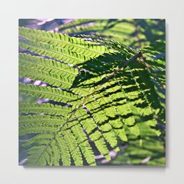 Green Fern in Sunny Dreams Metal Print
