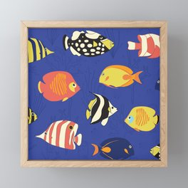 Exotic School Of Reef Fish Framed Mini Art Print