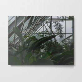 Greenhouse magic Metal Print