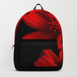 RED - 100418/2 Backpack