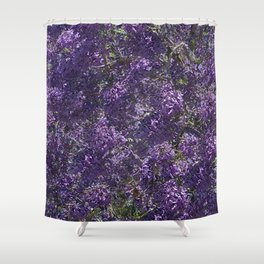 Jacaranda Blossoms Shower Curtain