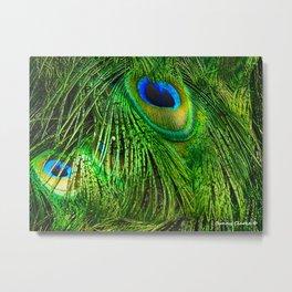 Peacock Glitter Metal Print