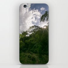 jungle greens iPhone & iPod Skin