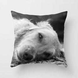 Sleepy Pup Throw Pillow