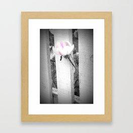 Pink Beauty Framed Art Print