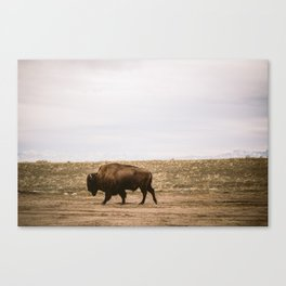 Walking all alone Canvas Print