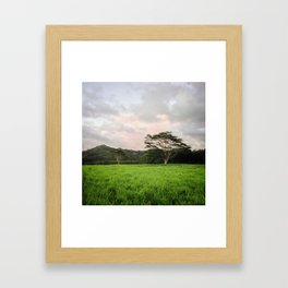 Kauai, HI Framed Art Print