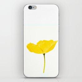 Yellow Poppy White Background #decor #society6 #buyart iPhone Skin