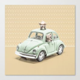Road Pig on Yellow Canvas Print