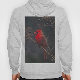The Northern Cardinal Hoody