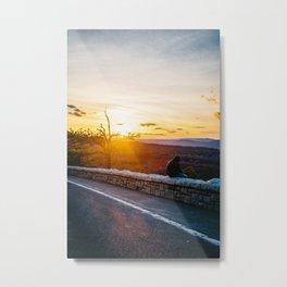 vivacious Metal Print
