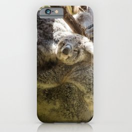 Mama and Baby Koala Bear iPhone Case