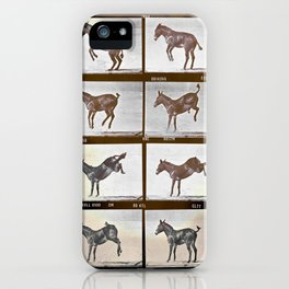 Muybridge Donkey  iPhone Case