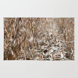 Harvest Season Rug