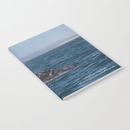 Cecilia, Pacific Gray Whale, Notebook