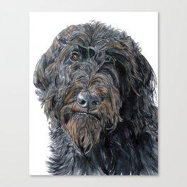 Pokey the Black Labradoodle Canvas Print