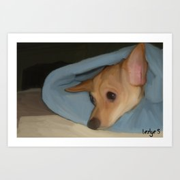 Sleepy Chihuahua Art Print