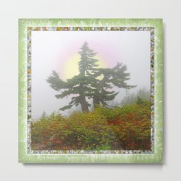 TSUGA MERTENSIANA IN AN AUTUMN CLOUD Metal Print