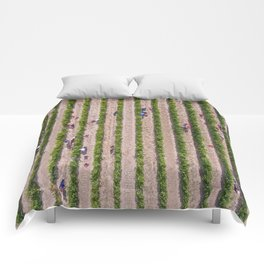 Grape Vine Comforters