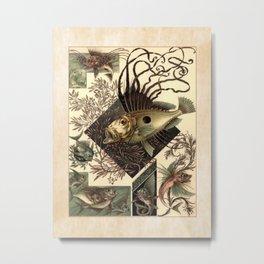 Anton Seder Fish III Metal Print