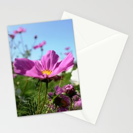 Cosmos in the Dream Garden Stationery Cards
